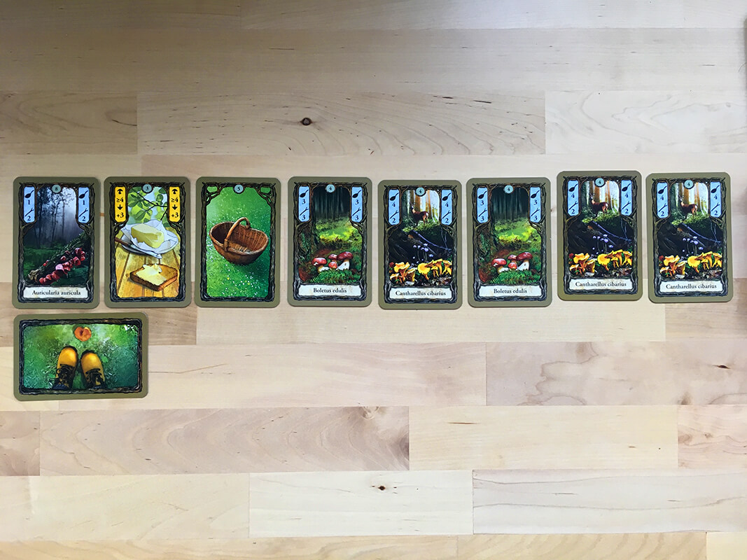 the forest line of cards